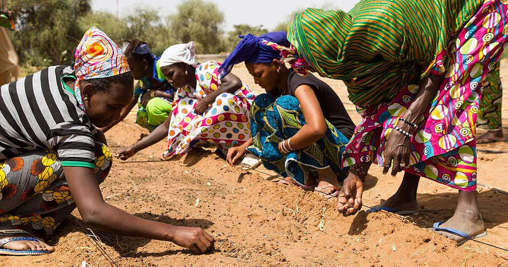 Afdb Pledges 6 5bn To Help Sahel Countries Fight Desertification 2