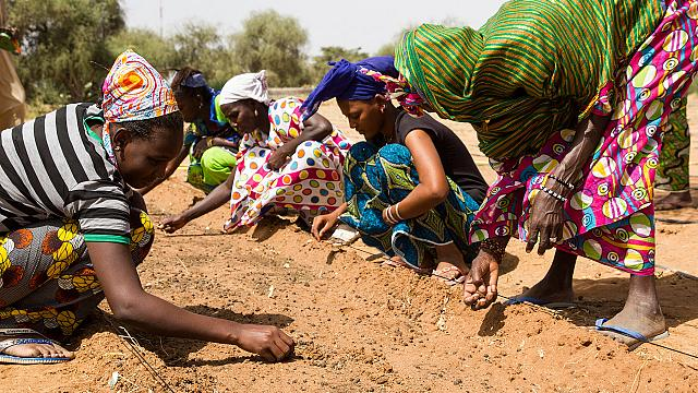 Afdb Pledges 6 5bn To Help Sahel Countries Fight Desertification