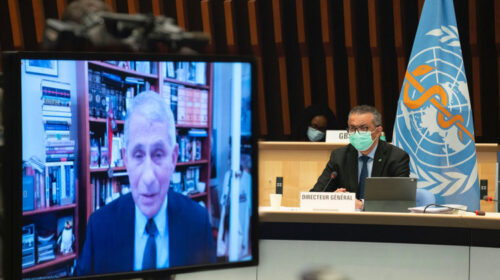 Fauci Announces Us Intention To Resume Major Role In Global Health 500x280