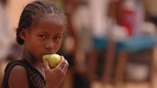 Who Urges Governments To Promote Healthy Food In Public Facilities 500x280